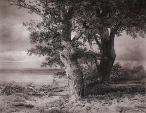 Reproduction of Savrasov's Painting, Oaks On The Shore, 1867