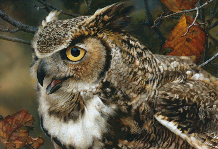 Reproductions of Carl Brenders Paintings In Focus-Great Horned O