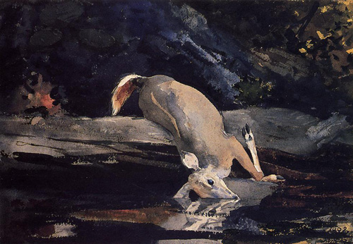 Reproductions of Winslow Homers Paintings Fallen Deer