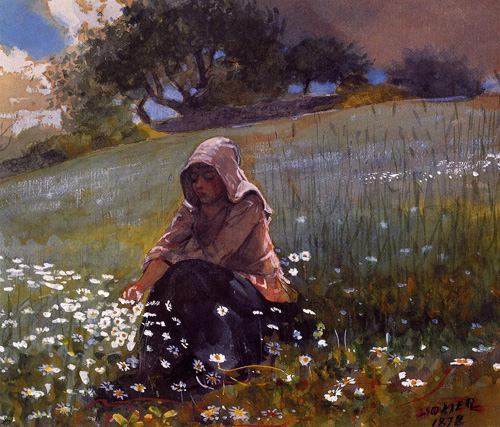 Reproductions of Winslow Homers Paintings Girl and Daisies