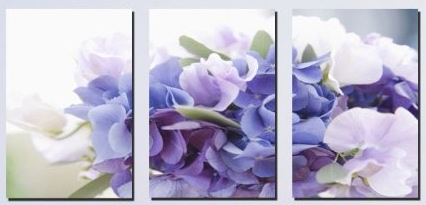 Transparent purple flowers Modern Abstract Art on canvas 3 pcs