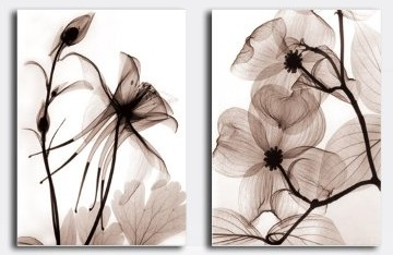 Transparent Flowers Modern Abstract Art on canvas 2 pcs